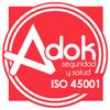 Seguridad y Salud ISO46001